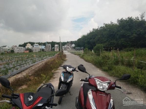 Bán đất tại Phường Phú Mỹ - Thị xã Thủ Dầu Một - Bình Dương