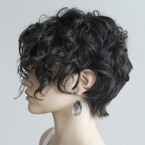 Curly hair crop haircut