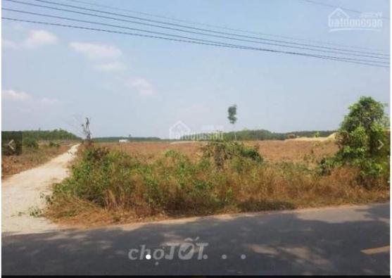 Bán đất Bàu Bàng sát KDC Nam Long chỉ với 285tr