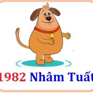 Gia chủ sinh năm 1982 tuổi Nhâm Tuất mệnh gì